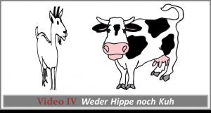 Videokurs 4